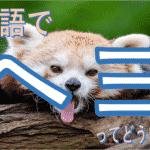 韓国語で「ヘヨ」はどういう意味か?