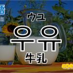韓国語単語「우유」を解説