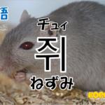 韓国語単語「쥐」を解説