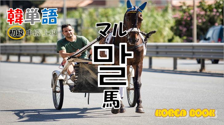 韓国語単語「말」を解説