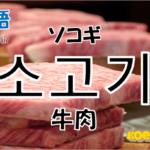 韓国語単語「소고기」を解説