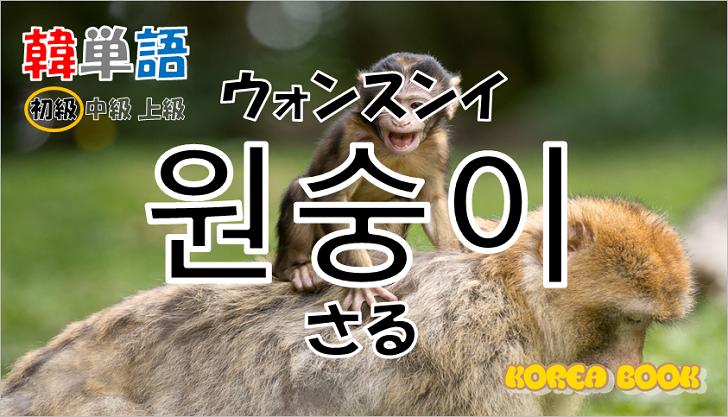 韓国語単語「원숭이」を解説