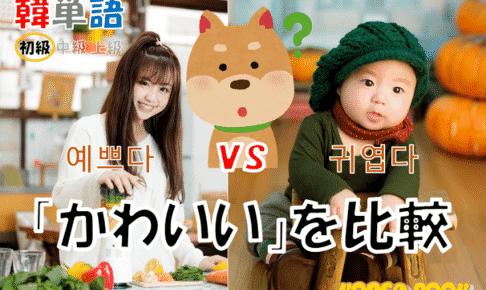 韓国語単語「かわいい」を比較