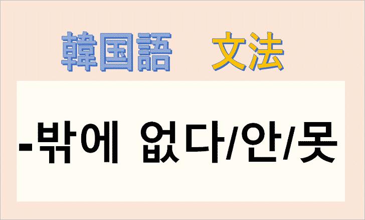 韓国語文法「밖에 없다」を解説