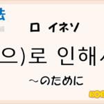 韓国語文法「-로 인해서」を解説
