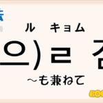 韓国語文法「-(으)ㄹ 겸」を解説