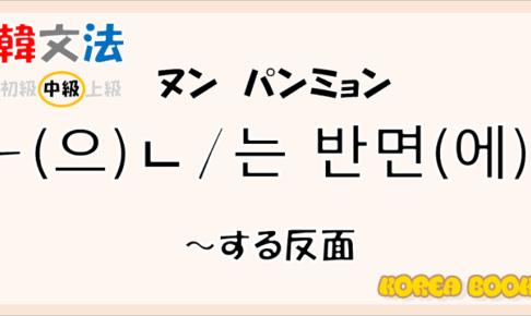 韓国語文法「(으)ㄴ/는 번면(에)」を解説