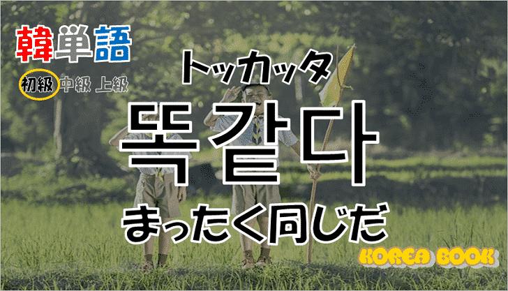 韓国語単語「똑같다」を解説