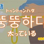 韓国語単語「뚱뚱하다」を解説