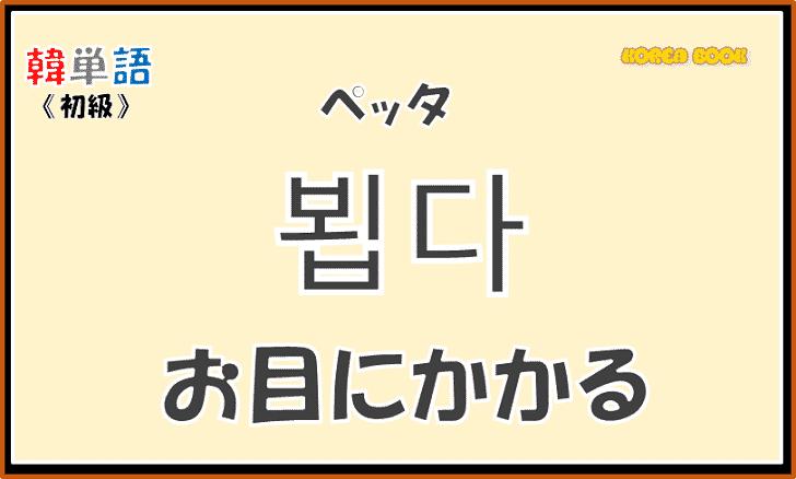 【韓国語単語】「뵙다|ペッタ|お目にかかる」の意味・使い方を解説