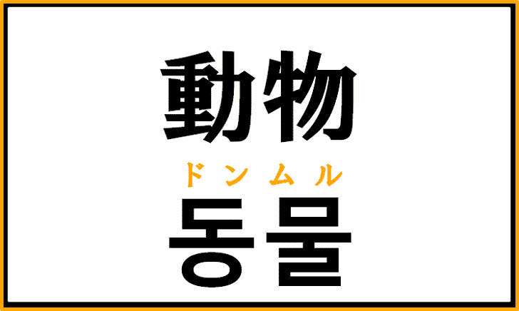 「動物」を韓国語で何という?「동물」の意味と使い方を解説!