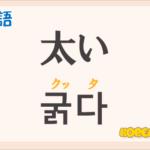 「太い」の韓国語は?ハングル「굵다(クッタ)」の意味と使い方を解説!