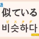 「似ている」の韓国語は?ハングル「비슷하다(ビスタダ)」の意味と使い方を解説!