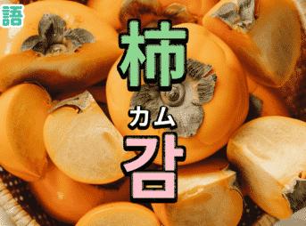 柿を韓国語で