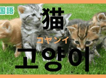「猫」を韓国語で